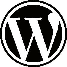WordPress websites update