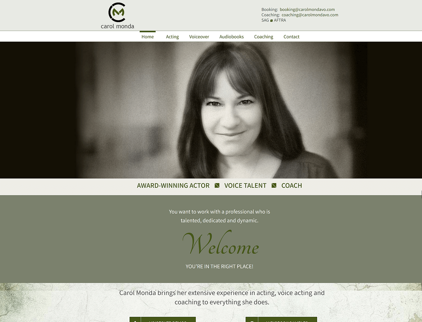 carol monda voice over web design